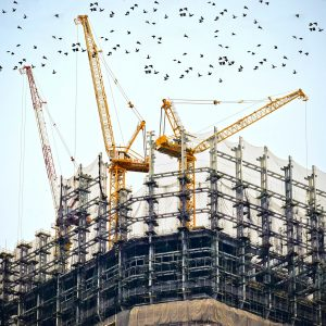 SPECIALISED BUILDING MATERIALS (SBM)